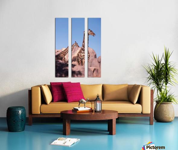 Giraffe Photograph Split Canvas print