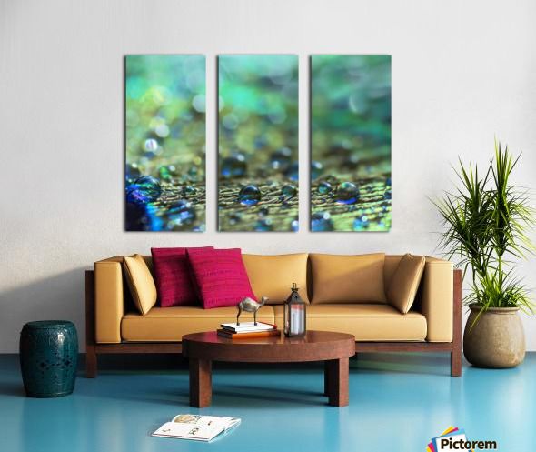 Shimmering Peacock Feather Split Canvas print