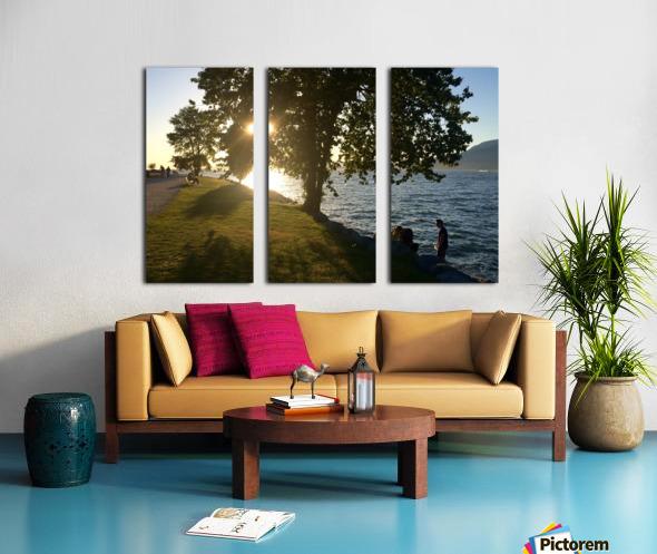 Tree Split Canvas print
