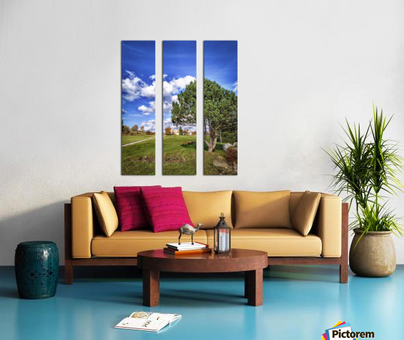 Tree and blue sky with clouds Split Canvas print