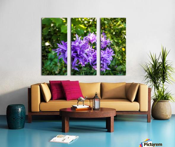 Violet flowers Split Canvas print