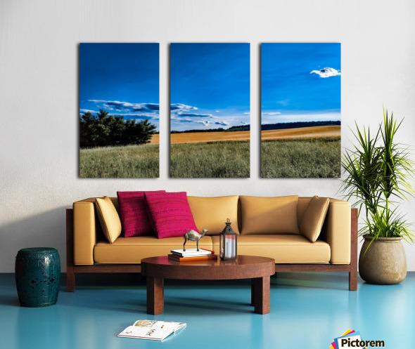 Summer landscape Split Canvas print