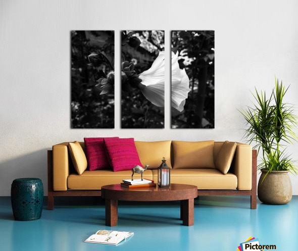 Blooming flower in black and white Split Canvas print