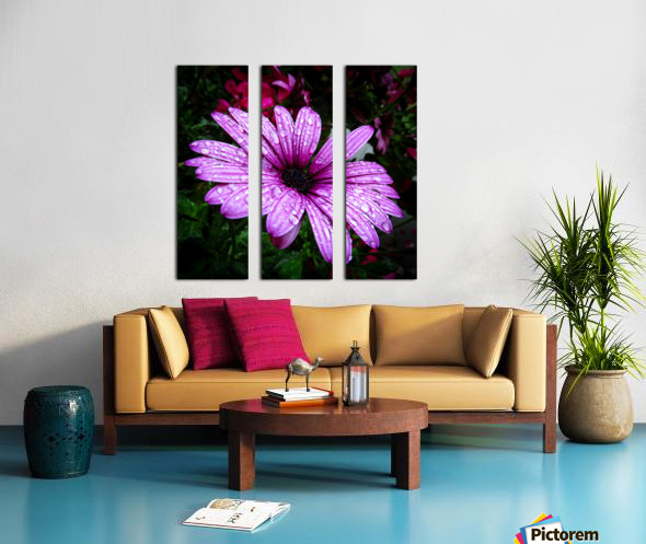 Violet flower with raindrops Split Canvas print