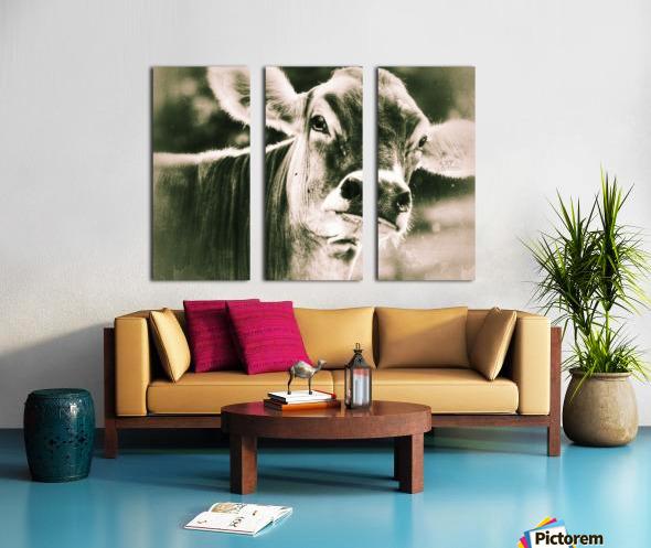 Gitane Split Canvas print