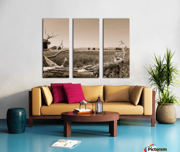 Isle aux Grues Split Canvas print