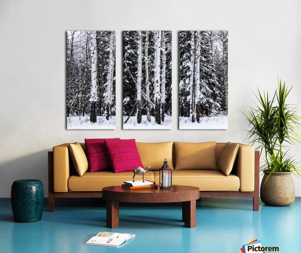 Aspens Snow Blanket Banff National Park Split Canvas print