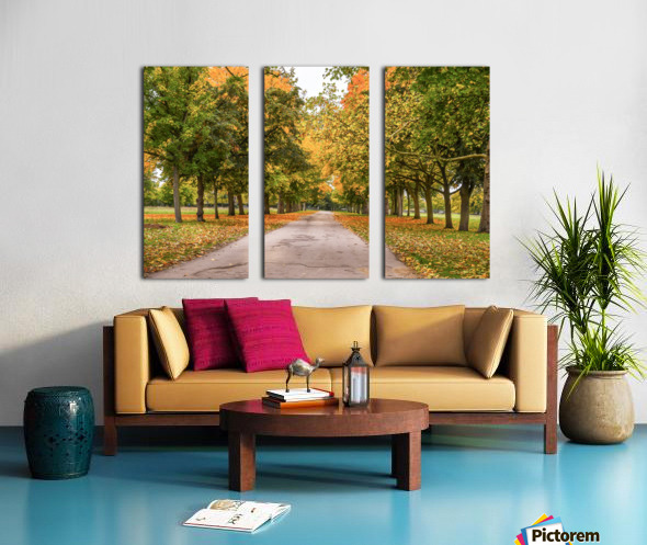 Autumn colours Split Canvas print