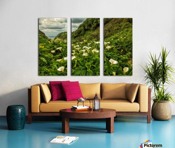 Life is Abundant Split Canvas print