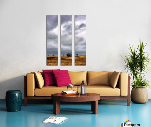 Or et argent Split Canvas print