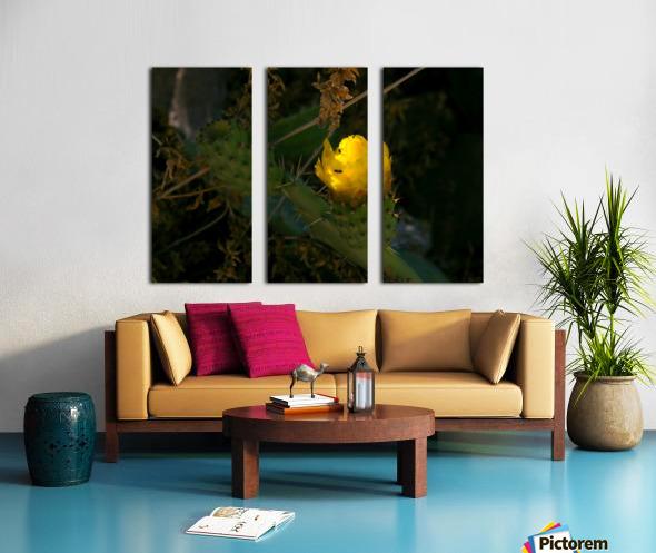 Cactus flower Split Canvas print