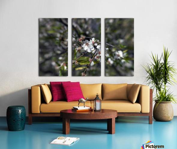 Flowering almonds 2 Split Canvas print