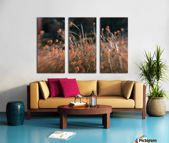 Shine 2 Split Canvas print