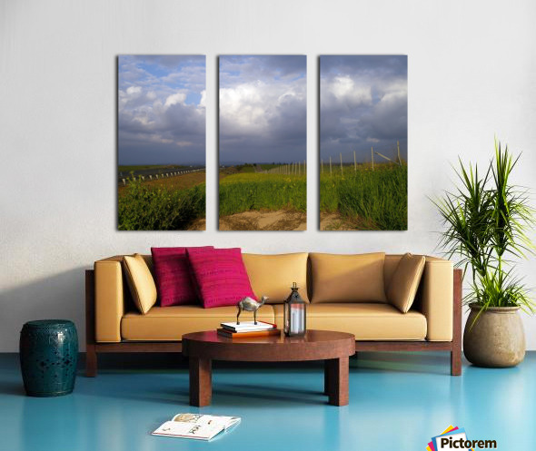 The summer Split Canvas print