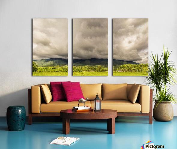 Nature IV Split Canvas print