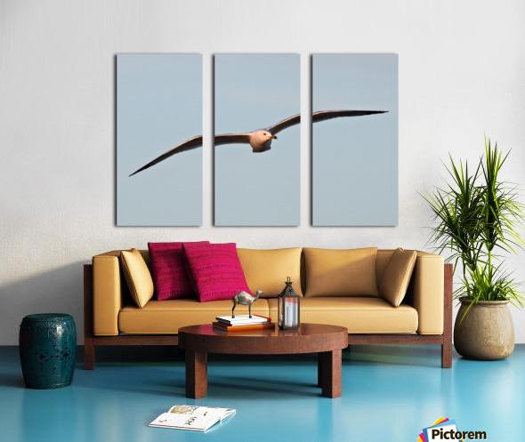 Fly like a Seagull Split Canvas print