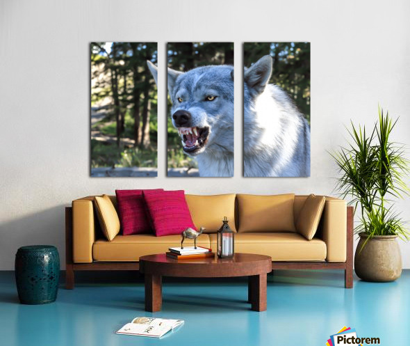 Wolf Dog Snarling Split Canvas print