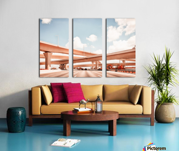 Dolphin Expressway 002 Split Canvas print