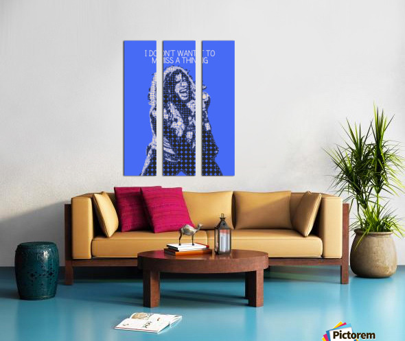 I Dont Want to Miss a Thing   Steven Tyler Split Canvas print
