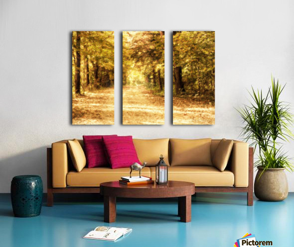 Autumn Path 2 Split Canvas print
