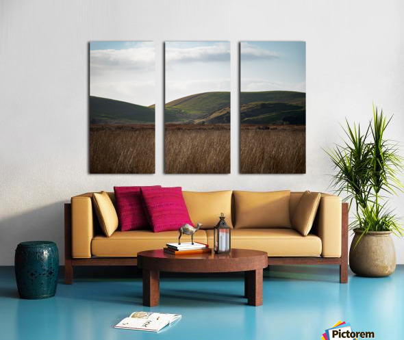 Coyote Hills During Sunset Split Canvas print