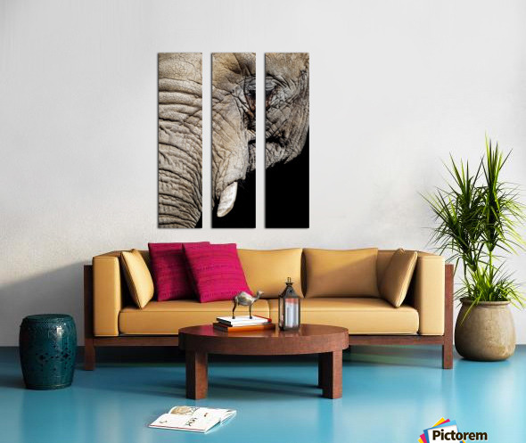 Elephant Close Up Split Canvas print