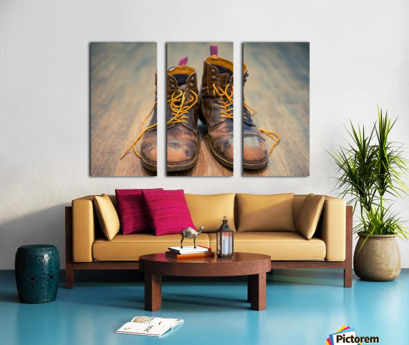 Worn Out Boots Split Canvas print