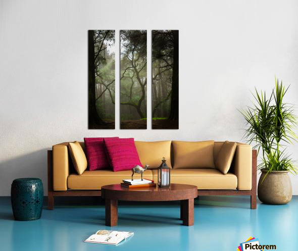 Clearing in the Woods Split Canvas print