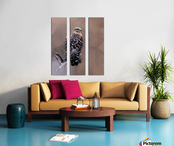 Hawk Split Canvas print