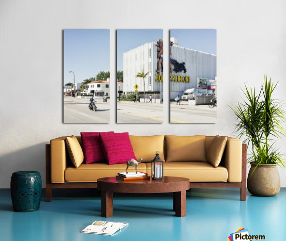 MiMo 031 Split Canvas print