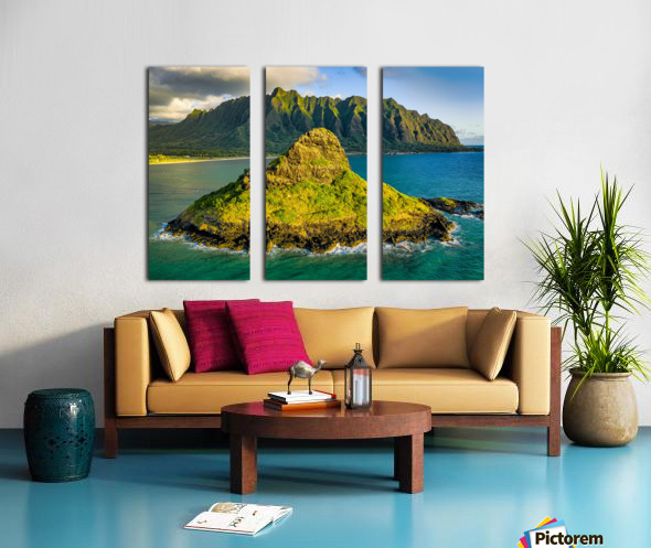 Mokolii  Split Canvas print