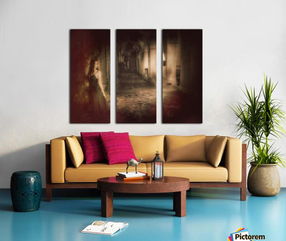 Palace Maiden Split Canvas print