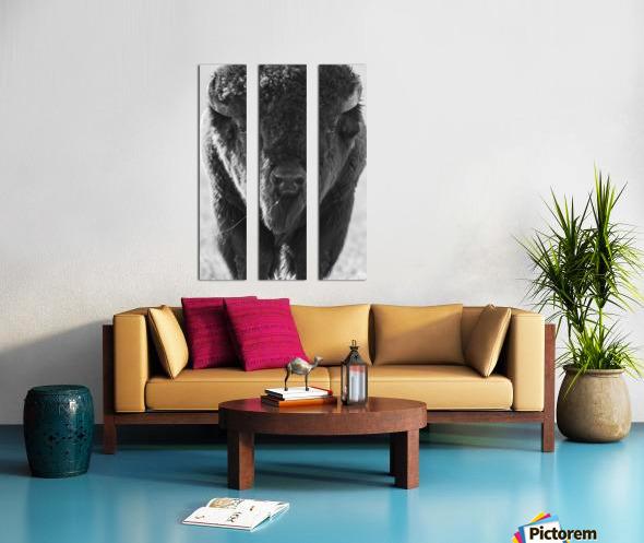 7893 - Buffalo Split Canvas print
