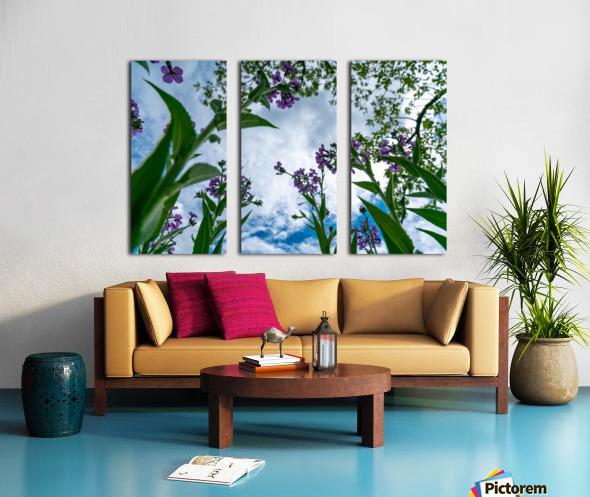 Skyward 2 Split Canvas print