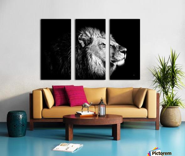 Lion with Attitude Split Canvas print