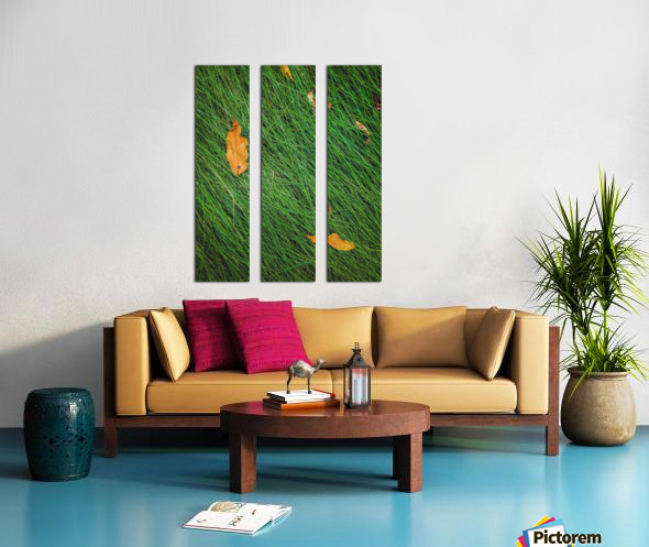 green grass field background with dry brown leaves Split Canvas print