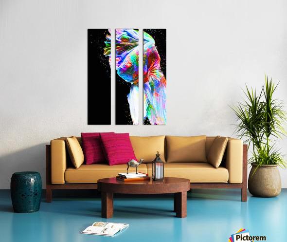 Betta Fish Lover 24 Split Canvas print