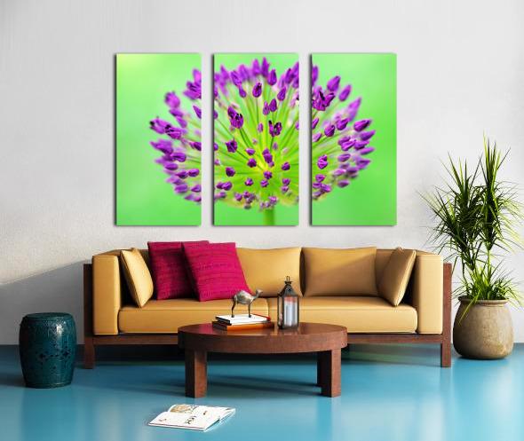 Neon Allium Split Canvas print