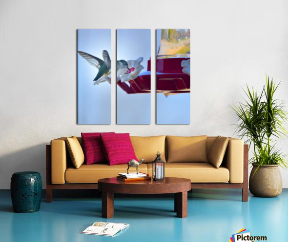 Oiseau-mouche Toile Multi-Panneaux