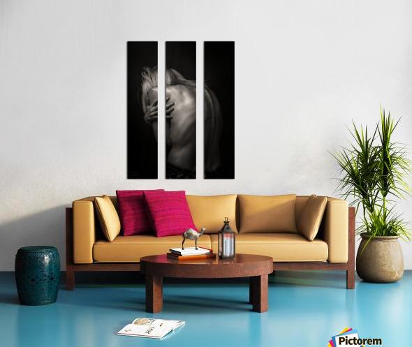 Dos Split Canvas print