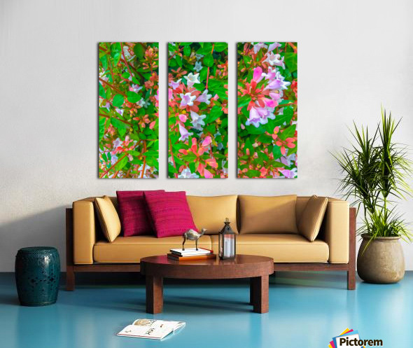closeup blooming pink flowers with green leaves Split Canvas print