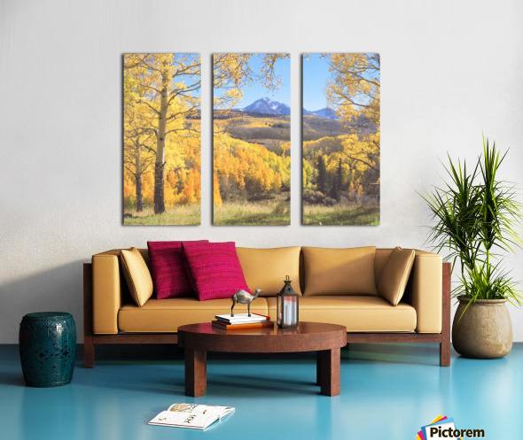 Sunshine Peak through the Aspen Split Canvas print