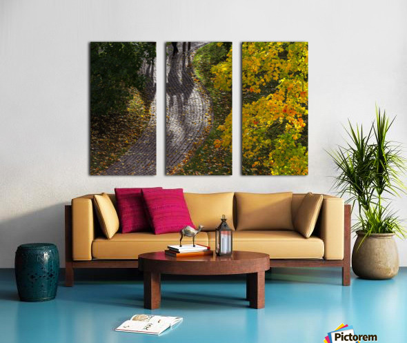 AUTUMN 02 Split Canvas print
