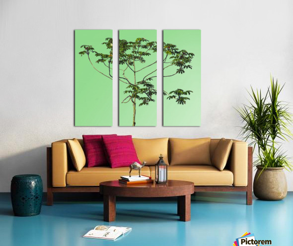 Nature - XIII Split Canvas print