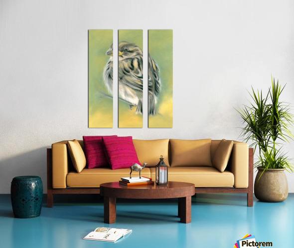 Sunny Sparrow Split Canvas print