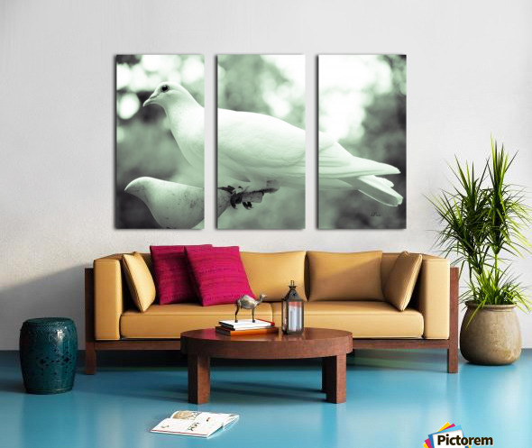 Dove enjoying a meal Split Canvas print