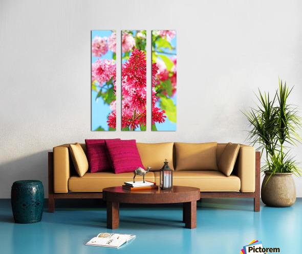 Sweet Side Of Red I Split Canvas print