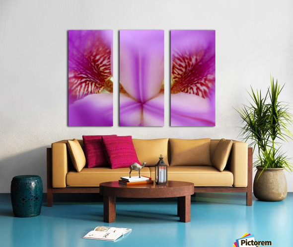 Abs 09_00008 Split Canvas print