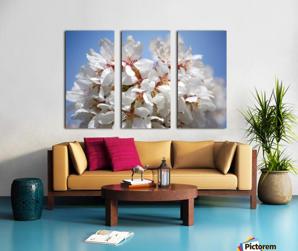 Flower Mix 09 Split Canvas print