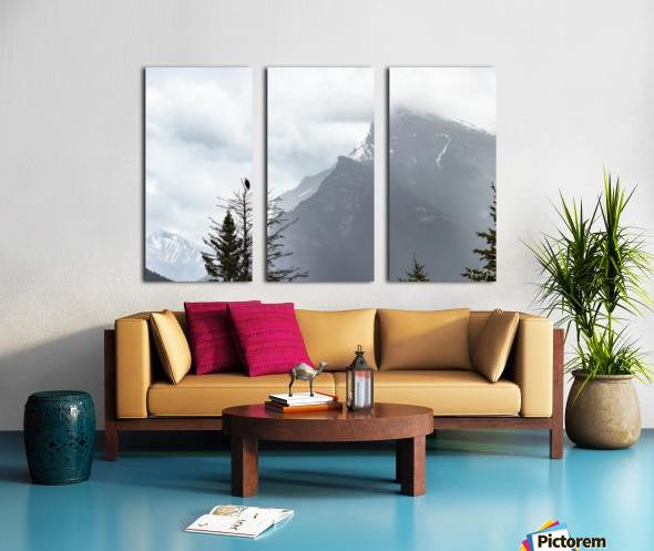 Bald Eagle In Banff National Park Split Canvas print